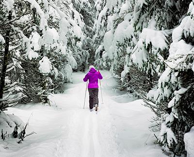 Подбор инвентаря для конькового стиля катания на лыжах