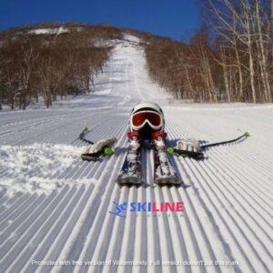 Передвижение на лыжах
